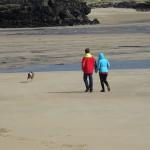 A Stroll on Barleycove Beach
